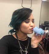 Demi Lovato World Tour Backstage with Fans!