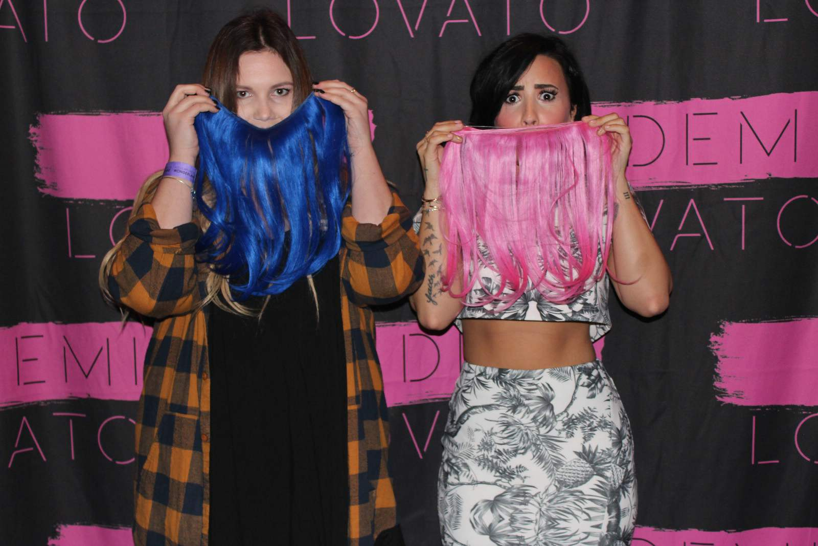 meet and greet demi lovato 2015 leaked