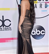 Demi_Lovato_-_2017_American_Music_Awards_-_November_19-34.jpg