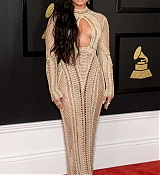 Demi_Lovato_-_The_59th_GRAMMY_Awards_at_STAPLES_Center_in_Los_Angeles-46.jpg